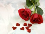 valentineRose